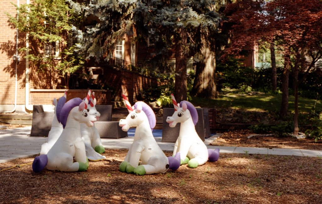 A Congress of Unicorns