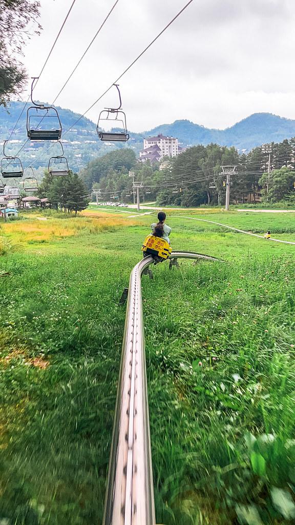 Luge at Yongpyeong Resort