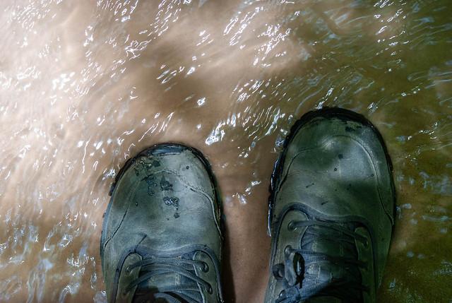 Feet in the Creek
