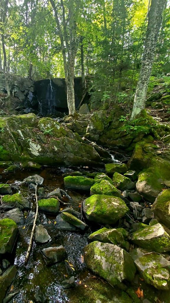 Rouse Creek