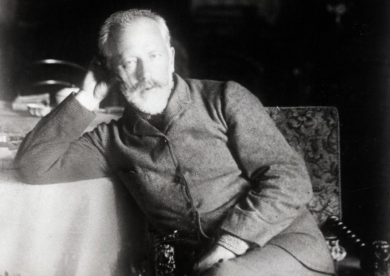 1893. Петр Ильич Чайковский (1840-1893) в последний год своей жизни