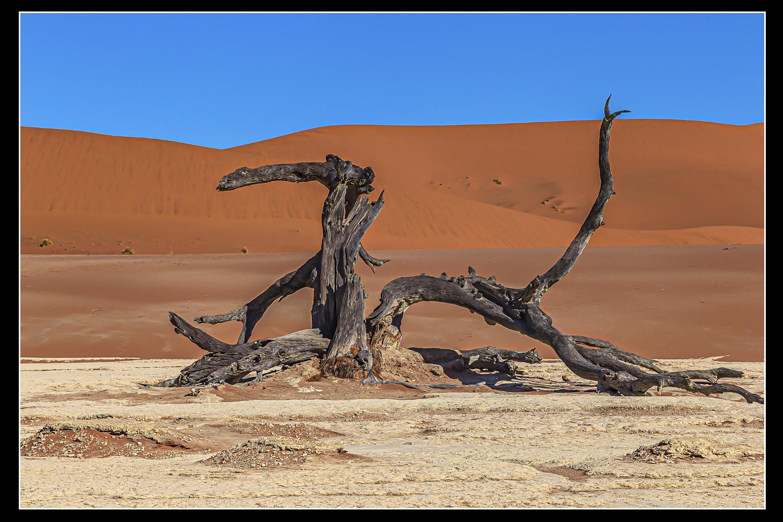 Matthias Bohr - Wüste Namib