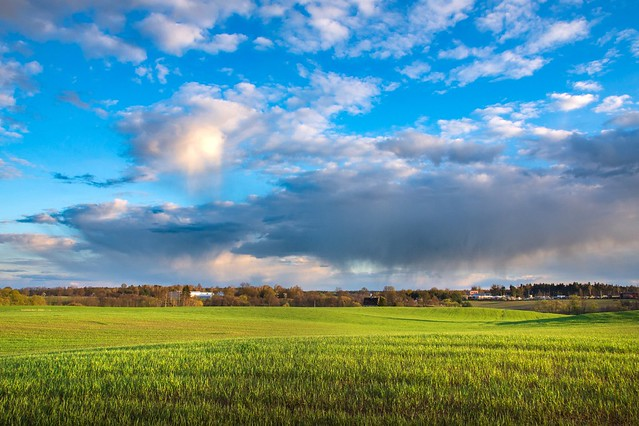 Landscape of Greater Poland