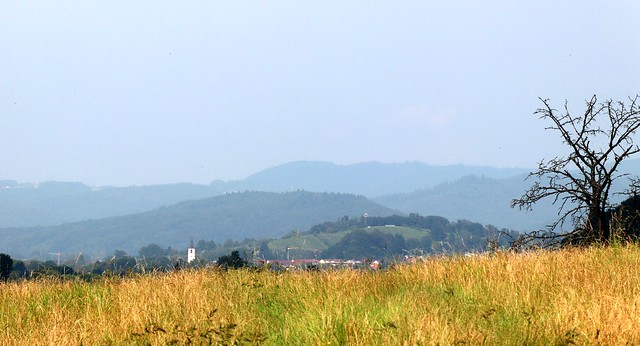 View from Zähringen towards Wildtal