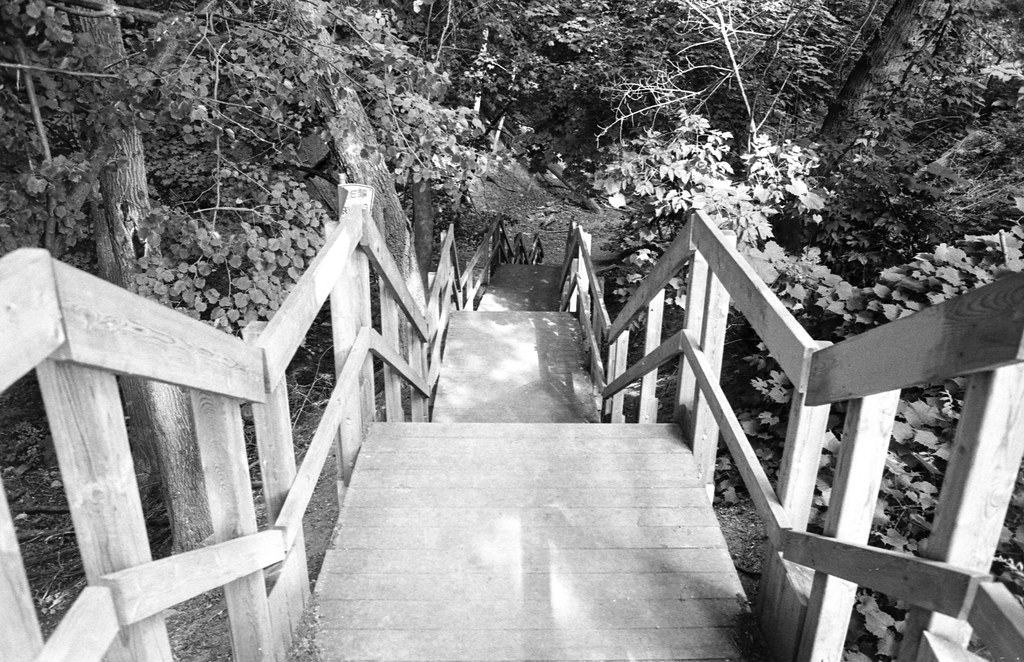 Stairs Down into the Ravine