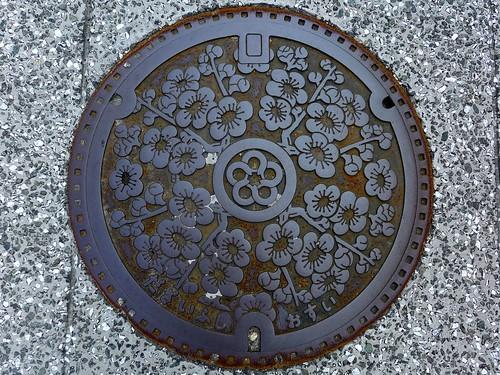 Dazaifu Fukuoka, manhole cover (福岡県太宰府市のマンホール)