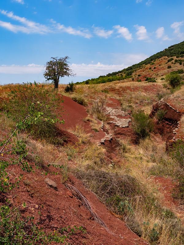 Terres rouges du Salagou... 51431991741_a80658a612_c