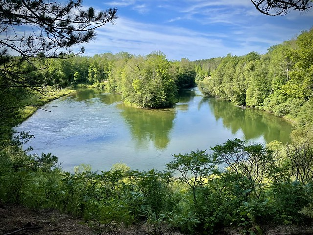 Manistee River Hike (1)