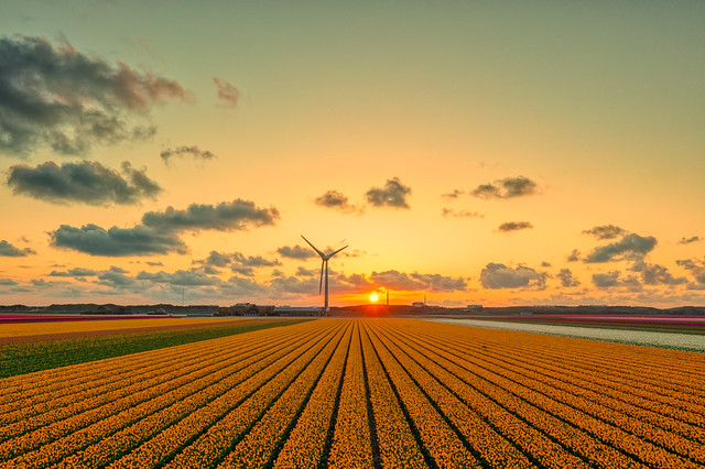 In Holland we invented the sunset.