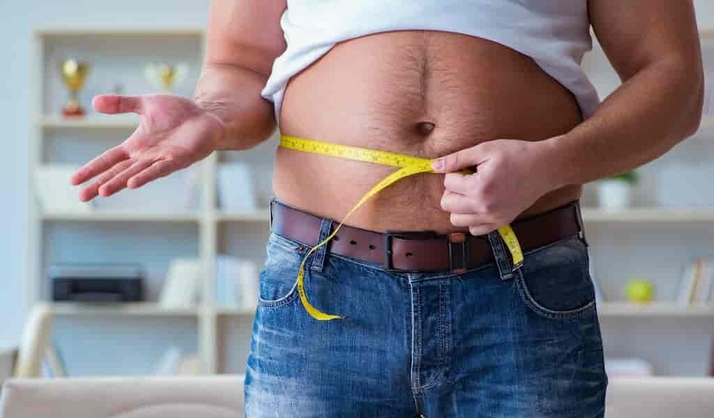 obésité-serait-causée-par-le-dérèglement-de-horloge-biologique