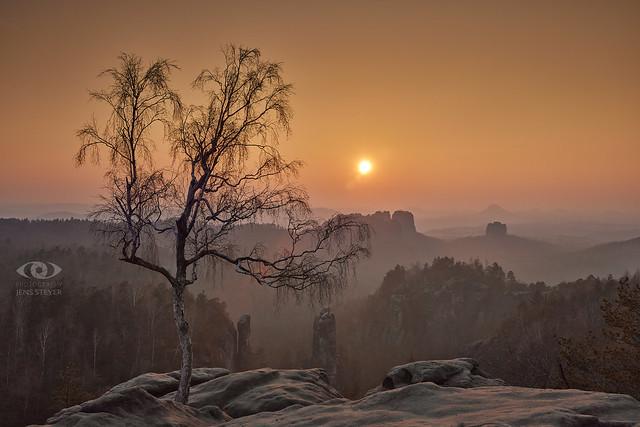 all by oneself in Sächsische Schweiz: Sunset   ·  ·  ·  (R5B_2551)