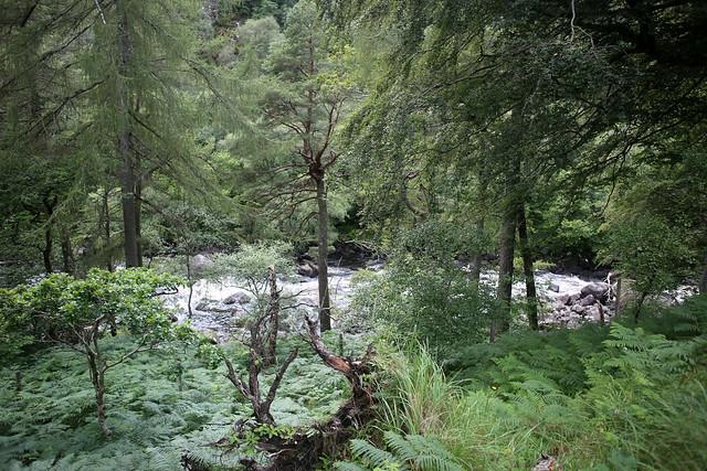 Gruinard River