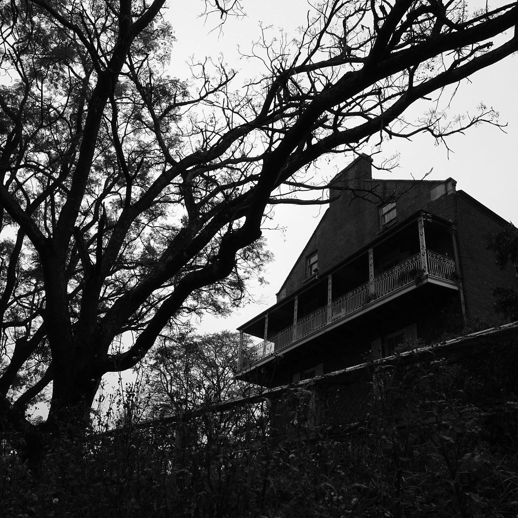 Docs house