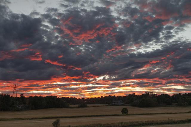 Autumn Evening (in explore)