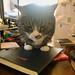 Watson on the desk