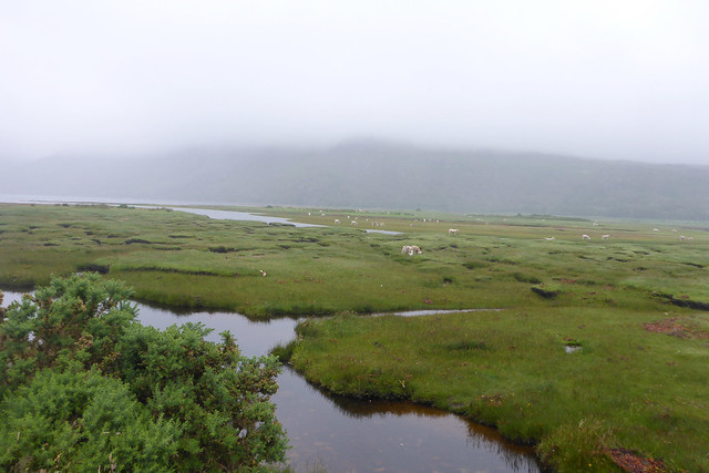 Little Loch Broom at Dundonnell