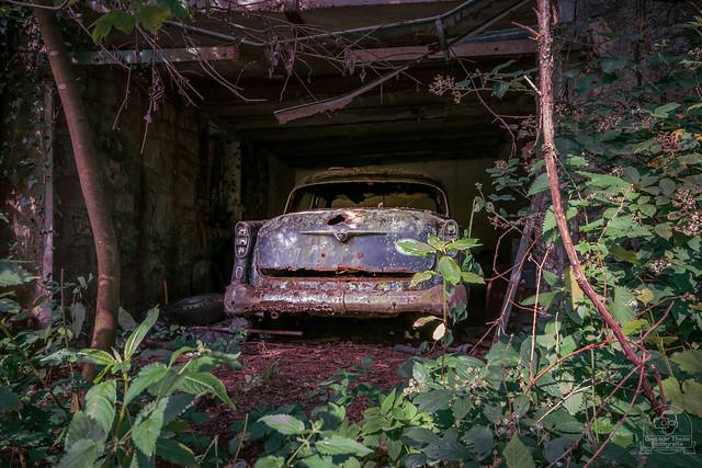 jungle garage