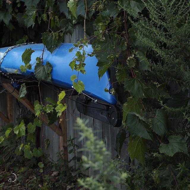 The blue kayak - Explore September 8, 2021