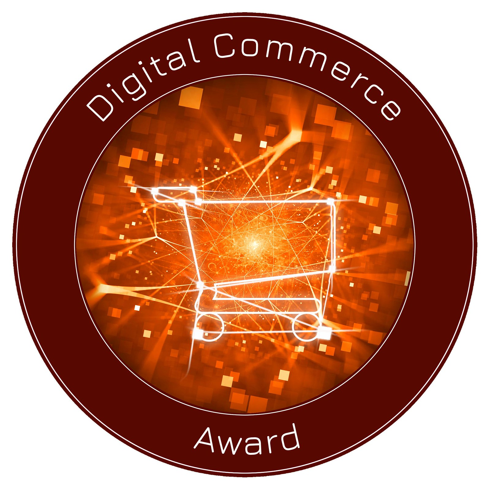 Digital Commerce Award 2021