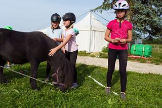 2021 Ponyclub Sommer