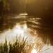 Saint Aigulin sunset on river Dronne 210709 001