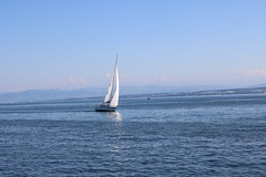 Bodensee-144