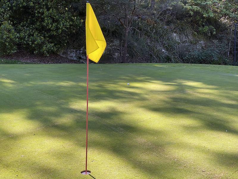 Second shot, par 4 hole 8