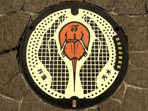 Kitsuki Oita, manhole cover 3 (大分県杵築市のマンホール3)