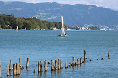 Bodensee-010