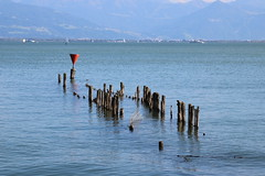 Bodensee-011