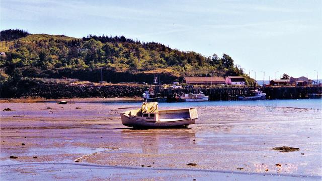 Boat moored on tidal flats