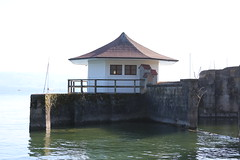 Bodensee-016