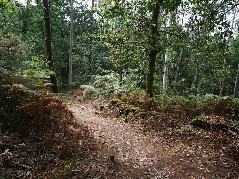 zas hiking trails