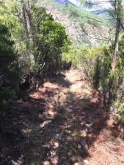 Descente retour HR12 : descente du col 535m de Livisani
