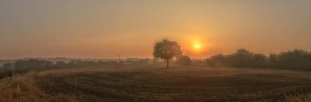 MISTY MORNING SUN
