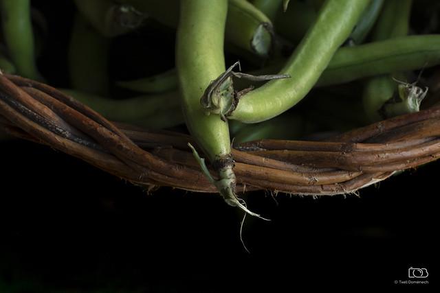 Mongetes verdes