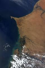 Majestic Senegal