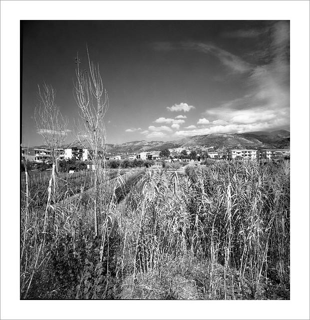 Grisolia Calabria  -Italy
