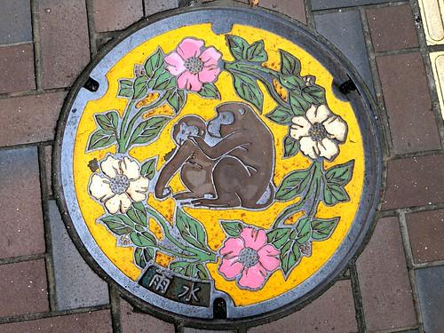 Oita city Oita pref, manhole cover (大分県大分市のマンホール)