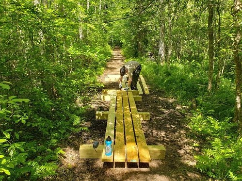 Photo of worker installing planks on a boardwalk in a wooded area