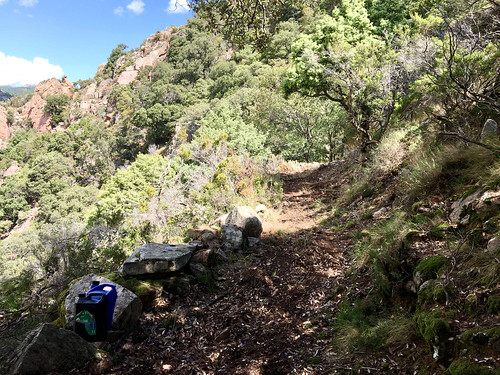 Descente retour HR12 : le chemin en direction du col 570m