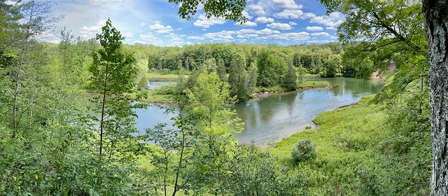 Manistee River Hike (4)