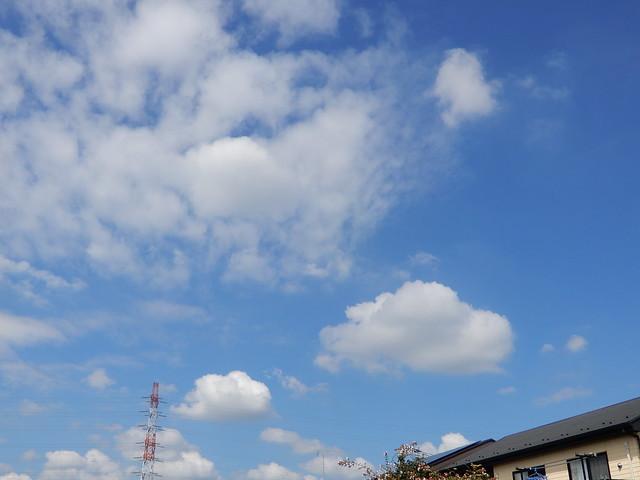 鉄塔のある風景 2021.9.10