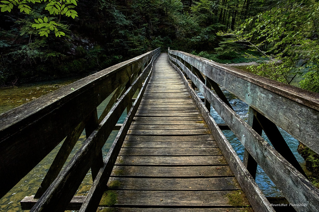 Prvi most na Kupi od izvora (2)