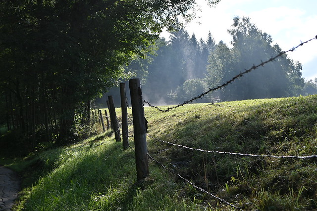 HFF happy fenced Friday