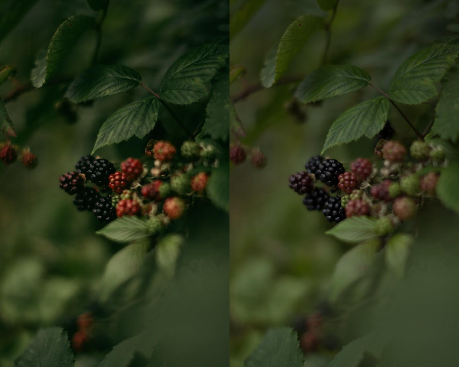 blackberry-2-side