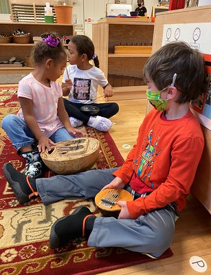 steel tongue drum and thumb pianos