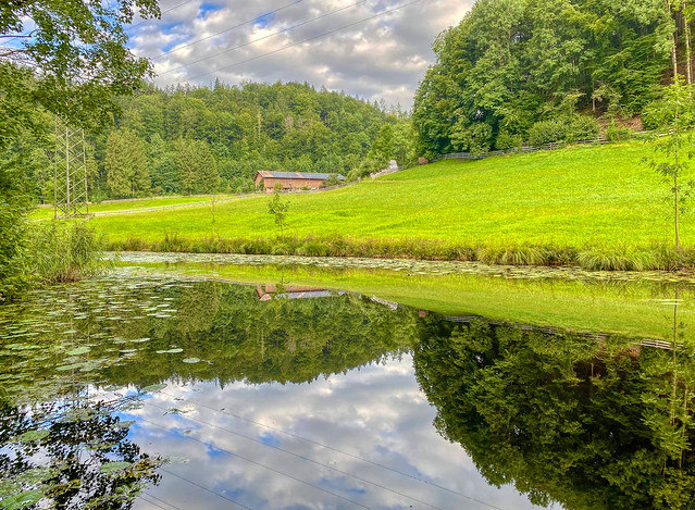 Pond with reflections in Thierberg in Tyrol, Austria