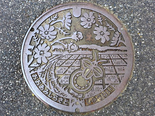 Oamishirasato Chiba, manhole cover 2 (千葉県大網白里市のマンホール2)