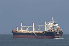 LADY DORIS  Bulk Carrier - Maasmond - Maasvlakte